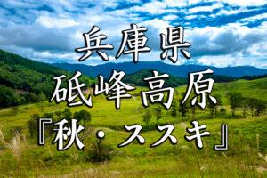 65527f99ec25bd23775fcbd6c8859f09-300x200 殿嶺秋-京都ブログアイキャッチ用