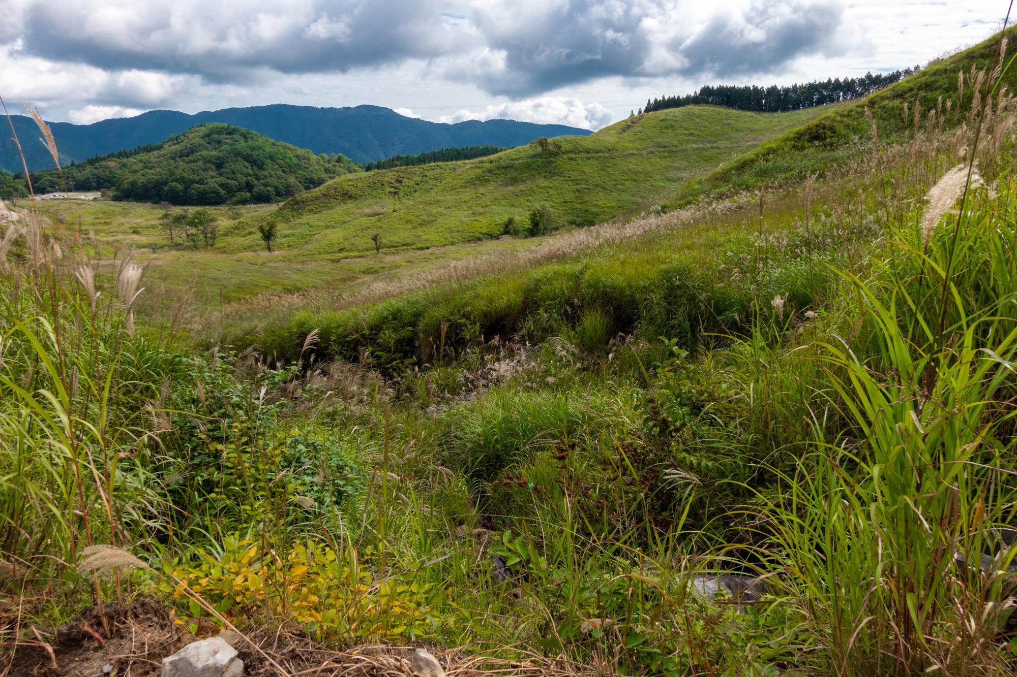 DSC02148 兵庫県 砥峰高原( 一面ススキの草原が広がる絶景の高原写真スポット!撮影した写真の紹介、 アクセス情報や撮影ポイントなど!)