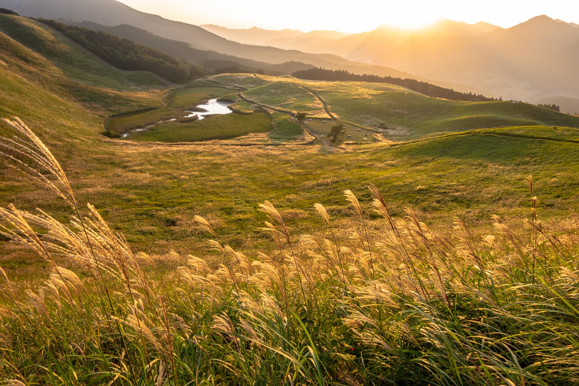 DSC02565 奈良  曽爾高原(2019年  秋におすすめ! 一面ススキの草原が広がる絶景の高原! 関西・近畿・奈良県のススキが観れる写真スポット! アクセス情報や撮影ポイントなど!)