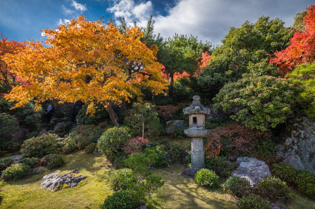 NIKON-CORPORATION_NIKON-D850_3245933810-3246048641_21973-1024x682 京都 紅葉の嵐山カメラ&観光おすすめの散策スポット ( 2019年 京都の秋、嵐山の綺麗な紅葉景色が見れる写真スポット・アクセス情報や交通手段など!)
