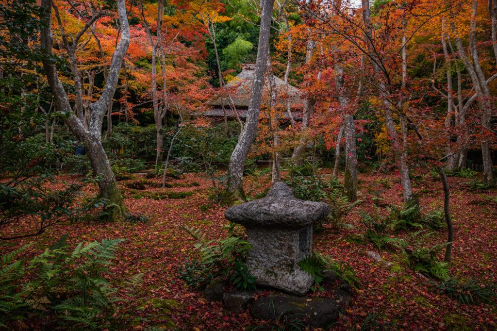 NIKON-CORPORATION_NIKON-D850_3255130162-3255237699_22055-1024x682 京都 紅葉の嵐山カメラ&観光おすすめの散策スポット ( 2019年 京都の秋、嵐山の綺麗な紅葉景色が見れる写真スポット・アクセス情報や交通手段など!)