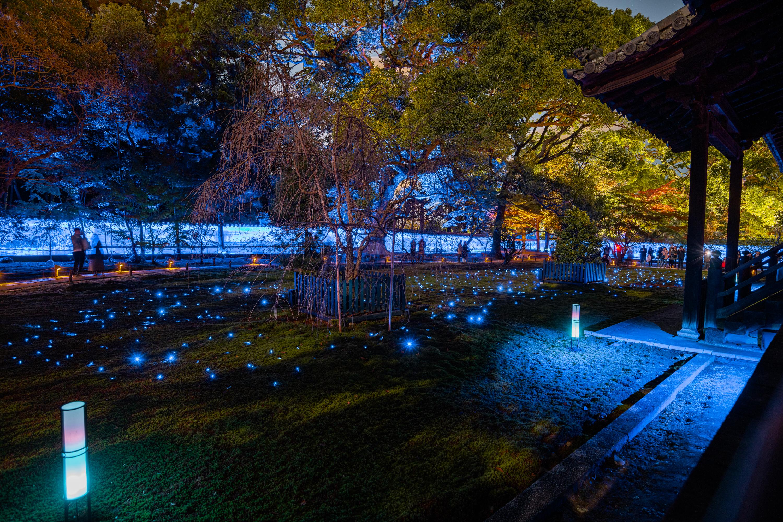 NIKON-CORPORATION_NIKON-D850_3267928818-3268035838_22173 京都  青蓮院門跡 Kyoto Shorenin temple ( 2019年 京都の秋、ライトアップが美しいおすすめの写真スポット・アクセス情報や交通手段など!)