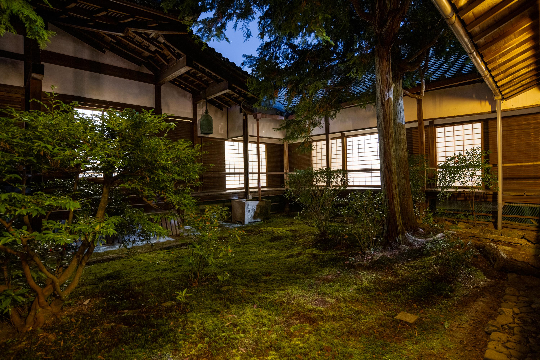 NIKON-CORPORATION_NIKON-D850_3268146354-3268246722_22175 京都  青蓮院門跡 Kyoto Shorenin temple ( 2019年 京都の秋、ライトアップが美しいおすすめの写真スポット・アクセス情報や交通手段など!)