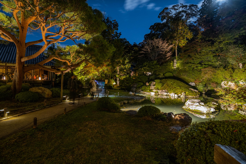 NIKON-CORPORATION_NIKON-D850_3268456690-3268562239_22178 京都  青蓮院門跡 Kyoto Shorenin temple ( 2019年 京都の秋、ライトアップが美しいおすすめの写真スポット・アクセス情報や交通手段など!)