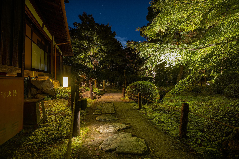 NIKON-CORPORATION_NIKON-D850_3269418034-3269525109_22187 京都  青蓮院門跡 Kyoto Shorenin temple ( 2019年 京都の秋、ライトアップが美しいおすすめの写真スポット・アクセス情報や交通手段など!)