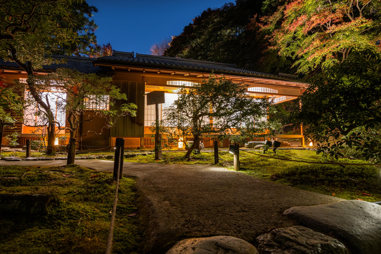 NIKON-CORPORATION_NIKON-D850_3269633906-3269740018_22189 京都  青蓮院門跡 Kyoto Shorenin temple ( 2019年 京都の秋、ライトアップが美しいおすすめの写真スポット・アクセス情報や交通手段など!)