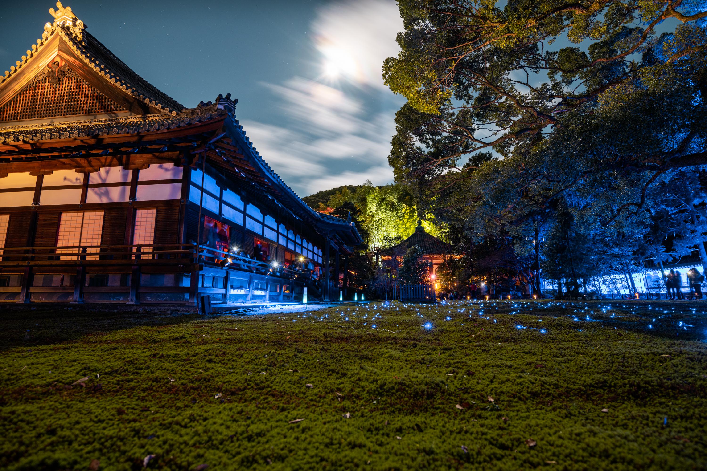 NIKON-CORPORATION_NIKON-D850_3270367986-3270471957_22196 京都  青蓮院門跡 Kyoto Shorenin temple ( 2019年 京都の秋、ライトアップが美しいおすすめの写真スポット・アクセス情報や交通手段など!)