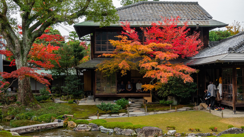 DSC00766 京都  無鄰菴  Kyoto Murinan( 2019年 京都の秋、紅葉の庭園が美しいおすすめの写真スポット・アクセス情報や交通手段など!)