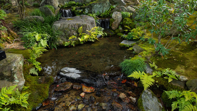 DSC00778 京都  無鄰菴  Kyoto Murinan( 2019年 京都の秋、紅葉の庭園が美しいおすすめの写真スポット・アクセス情報や交通手段など!)