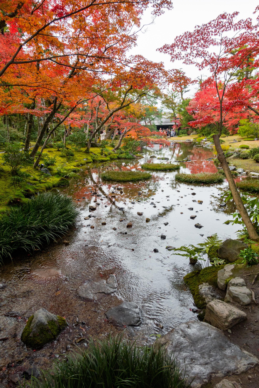 DSC00781 京都  無鄰菴  Kyoto Murinan( 2019年 京都の秋、紅葉の庭園が美しいおすすめの写真スポット・アクセス情報や交通手段など!)