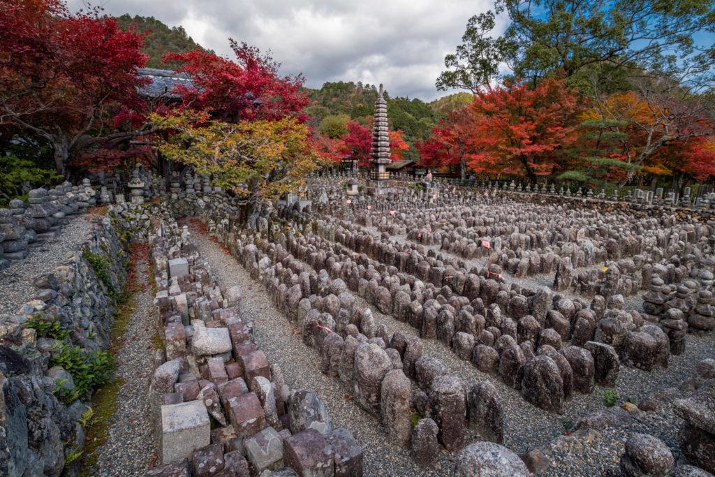 NIKON-CORPORATION_NIKON-D85022093-1024x683 京都 紅葉の嵐山カメラ&観光おすすめの散策スポット ( 2019年 京都の秋、嵐山の綺麗な紅葉景色が見れる写真スポット・アクセス情報や交通手段など!)
