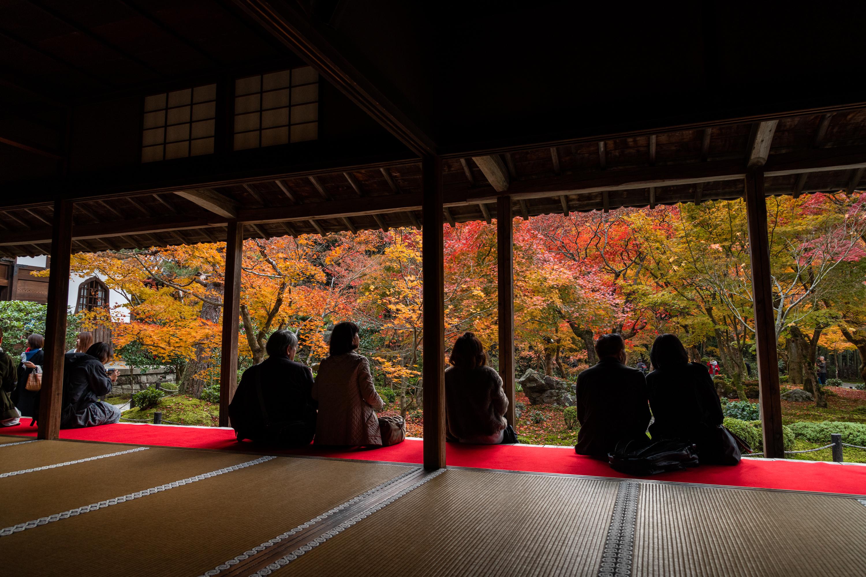NIKON-CORPORATION_NIKON-D850_3124708786-3124816040_21548 京都  圓光寺  Kyoto Enkoji Temple( 2019年 京都の秋、紅葉の庭園が美しいおすすめの写真スポット・アクセス情報や交通手段など!)