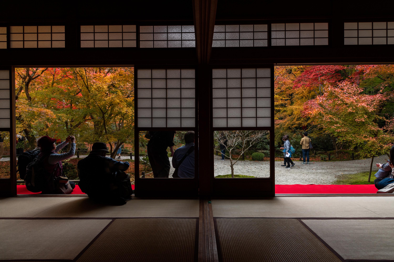 NIKON-CORPORATION_NIKON-D850_3132128050-3132230836_21586 京都  圓光寺  Kyoto Enkoji Temple( 2019年 京都の秋、紅葉の庭園が美しいおすすめの写真スポット・アクセス情報や交通手段など!)