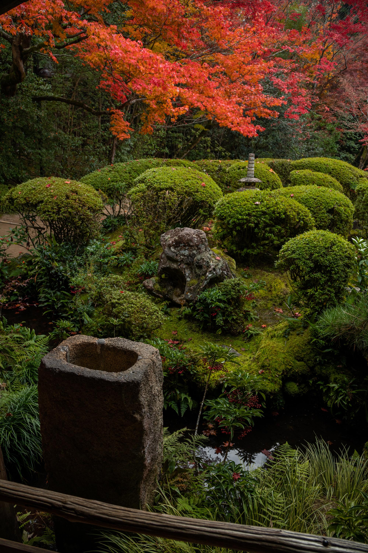 NIKON-CORPORATION_NIKON-D850_3342787506-3342889766_22566 京都  詩仙堂  Kyoto Shisendo Temple ( 2019年 京都の秋、紅葉の庭園が美しいおすすめの写真スポット・アクセス情報や交通手段など!)