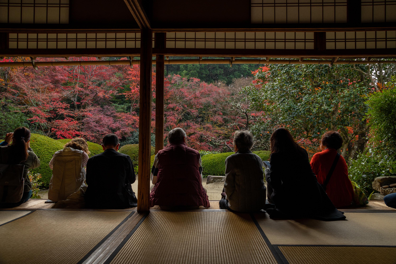 NIKON-CORPORATION_NIKON-D850_3344517746-3344622751_22583 京都  詩仙堂  Kyoto Shisendo Temple ( 2019年 京都の秋、紅葉の庭園が美しいおすすめの写真スポット・アクセス情報や交通手段など!)