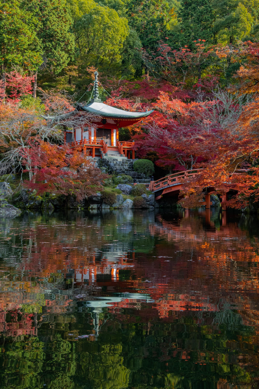 DSC00735 京都  醍醐寺  Kyoto Daigoji( 2019年 京都の秋、紅葉の庭園が美しいおすすめの写真スポット・アクセス情報や交通手段など!)
