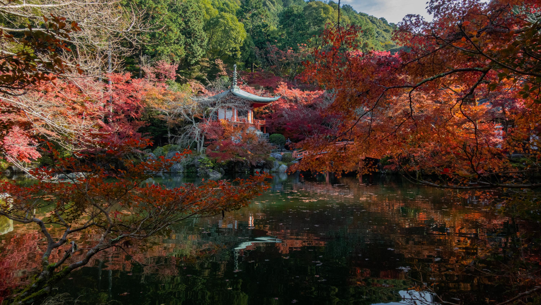 DSC00739 京都  醍醐寺  Kyoto Daigoji( 2019年 京都の秋、紅葉の庭園が美しいおすすめの写真スポット・アクセス情報や交通手段など!)