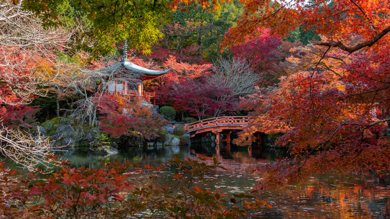 DSC00744 京都  醍醐寺  Kyoto Daigoji( 2019年 京都の秋、紅葉の庭園が美しいおすすめの写真スポット・アクセス情報や交通手段など!)