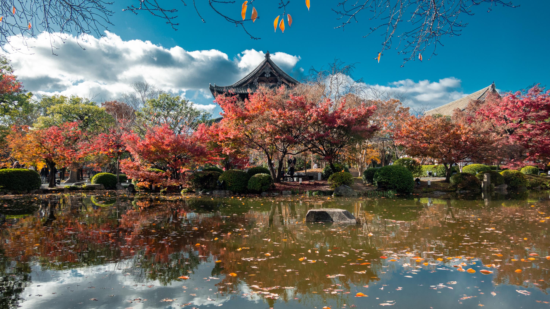 DSC01450 京都  東寺  Kyoto Toji Temple( 2019年 京都の秋、紅葉の庭園が美しいおすすめの写真スポット・アクセス情報や交通手段など!)