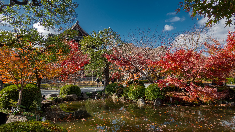 DSC01475 京都  東寺  Kyoto Toji Temple( 2019年 京都の秋、紅葉の庭園が美しいおすすめの写真スポット・アクセス情報や交通手段など!)
