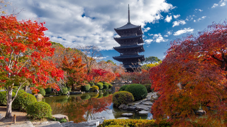 DSC01491 京都  東寺  Kyoto Toji Temple( 2019年 京都の秋、紅葉の庭園が美しいおすすめの写真スポット・アクセス情報や交通手段など!)