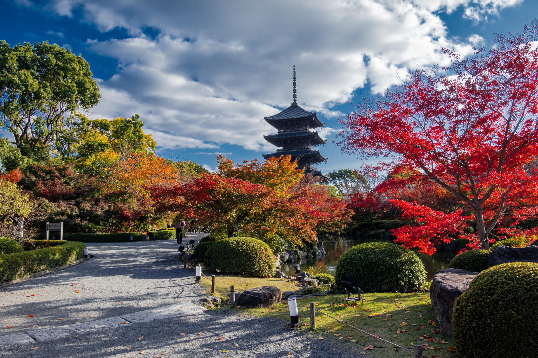 DSC01549 京都  東寺  Kyoto Toji Temple( 2019年 京都の秋、紅葉の庭園が美しいおすすめの写真スポット・アクセス情報や交通手段など!)