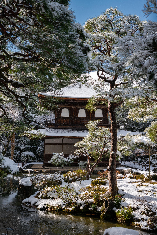 NIKON-CORPORATION_NIKON-D800E_42128498-42221409_300 京都  銀閣寺( 京都の冬 雪景色の庭園が美しいおすすめの写真撮影スポット!撮影した写真の紹介、アクセス情報や交通手段など!)