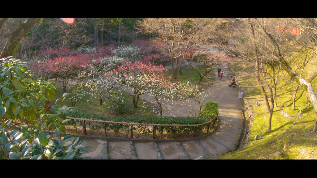 """2c9da99f43992b024c4b9887cba9274b-1024x576 【2020年】関西の『梅林・梅園』おすすめ写真スポット""""9選""""を紹介! 開花情報や見頃情報などを実際に訪れ撮影した写真とお届けします!"""