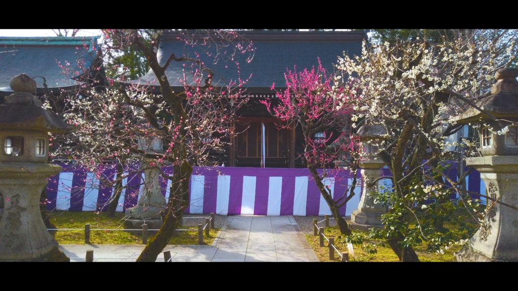 """6745af8e375753d2306bca925697bb18-1024x576 【2020年】関西の『梅林・梅園』おすすめ写真スポット""""9選""""を紹介! 開花情報や見頃情報などを実際に訪れ撮影した写真とお届けします!"""