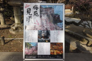 DJI_0650-1-300x200