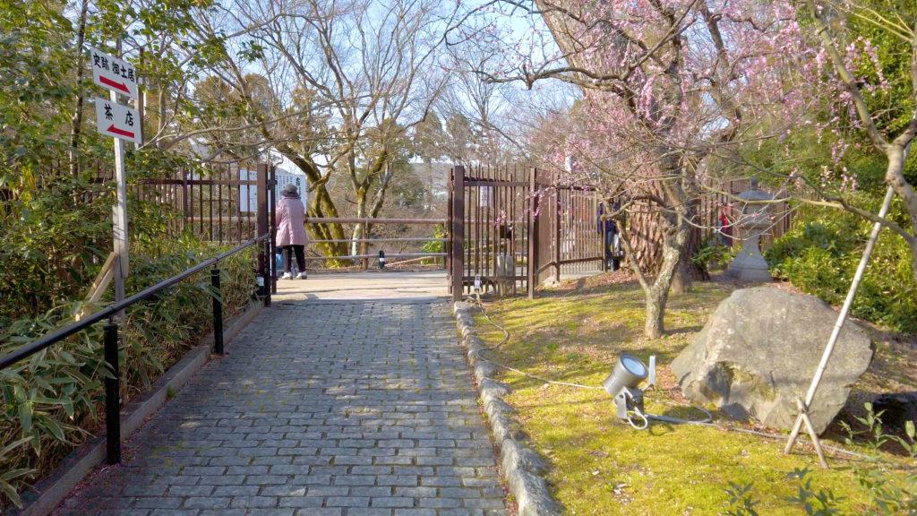 f96c071391c6f17be8746f05a665e318-1024x576 京都府 北野天満宮 Kitano Tenmangu (2020年 京都の春におすすめ梅苑・梅林スポット! 撮影した写真の紹介、ライトアップ・アクセス情報や交通手段・駐車場情報などまとめ)