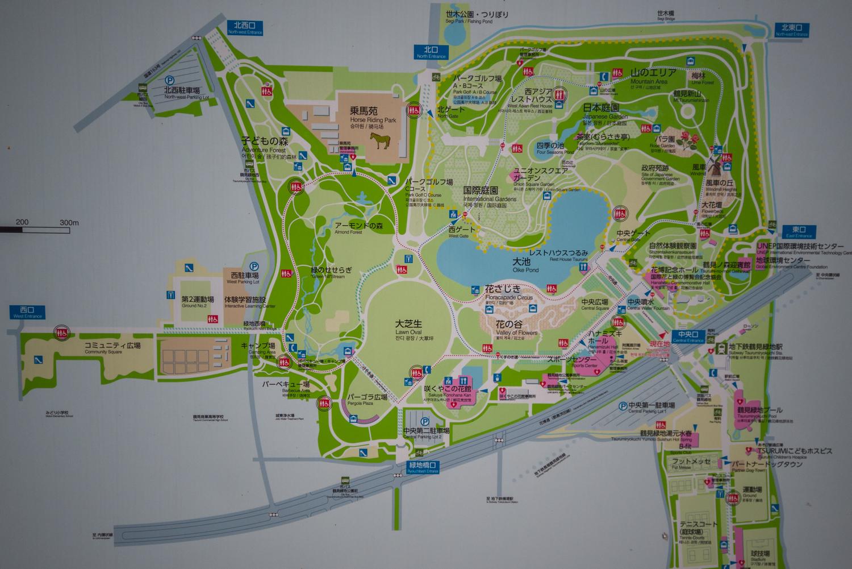DJI_0389 大阪府 鶴見緑地公園(梅や河津桜に水仙など春の花おすすめの写真スポット。 アクセス情報や交通手段・駐車場情報などまとめ)