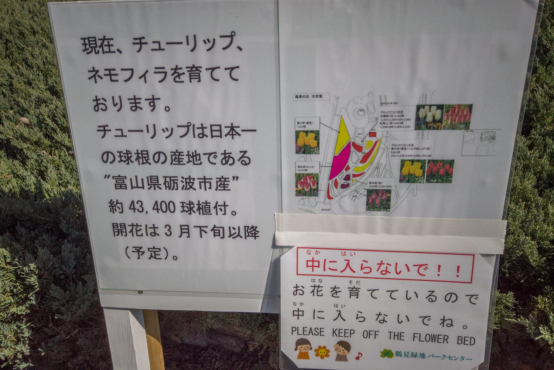 DJI_0393 大阪府 鶴見緑地公園(梅や河津桜に水仙など春の花おすすめの写真スポット。 アクセス情報や交通手段・駐車場情報などまとめ)