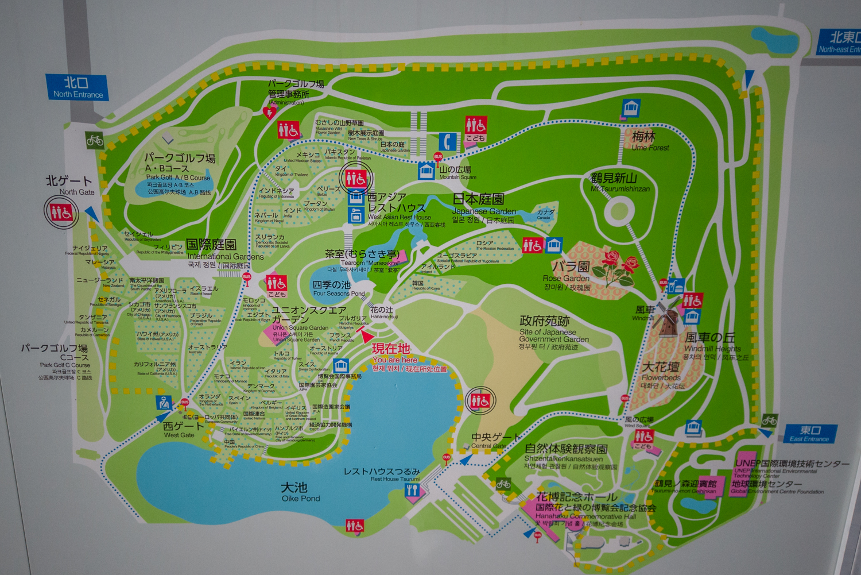 DJI_0514 大阪府 鶴見緑地公園(梅や河津桜に水仙など春の花おすすめの写真スポット。 アクセス情報や交通手段・駐車場情報などまとめ)