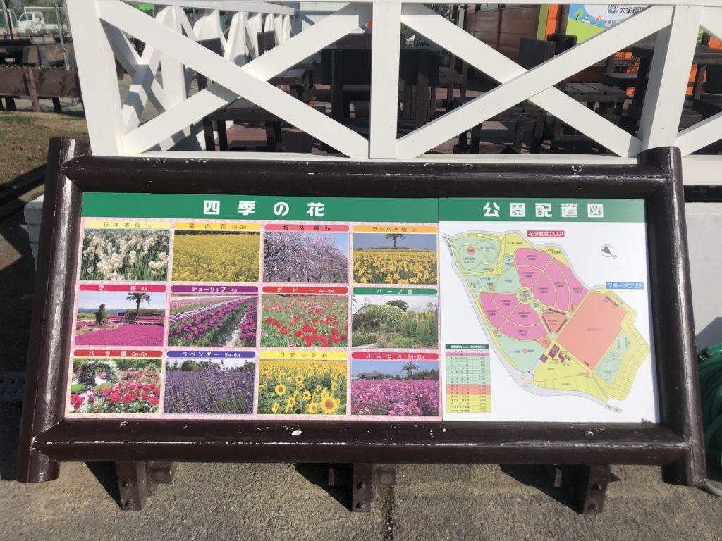 c5cf2491cd5fefafb9329e1913f85b27-1024x768 大阪府 和泉リサイクル環境公園(梅と水仙、菜の花が撮影できる春におすすめの写真スポット。 撮影した写真の紹介、アクセス情報や交通手段・駐車場情報などまとめ)