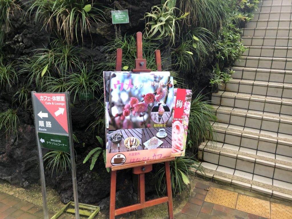 ecbc0f345913bdcb811032063599bc60-1024x768 大阪府 花の文化園(こたつに入って梅の見物ができる春におすすめの写真スポット. アクセス情報や交通手段・駐車場情報などまとめ)