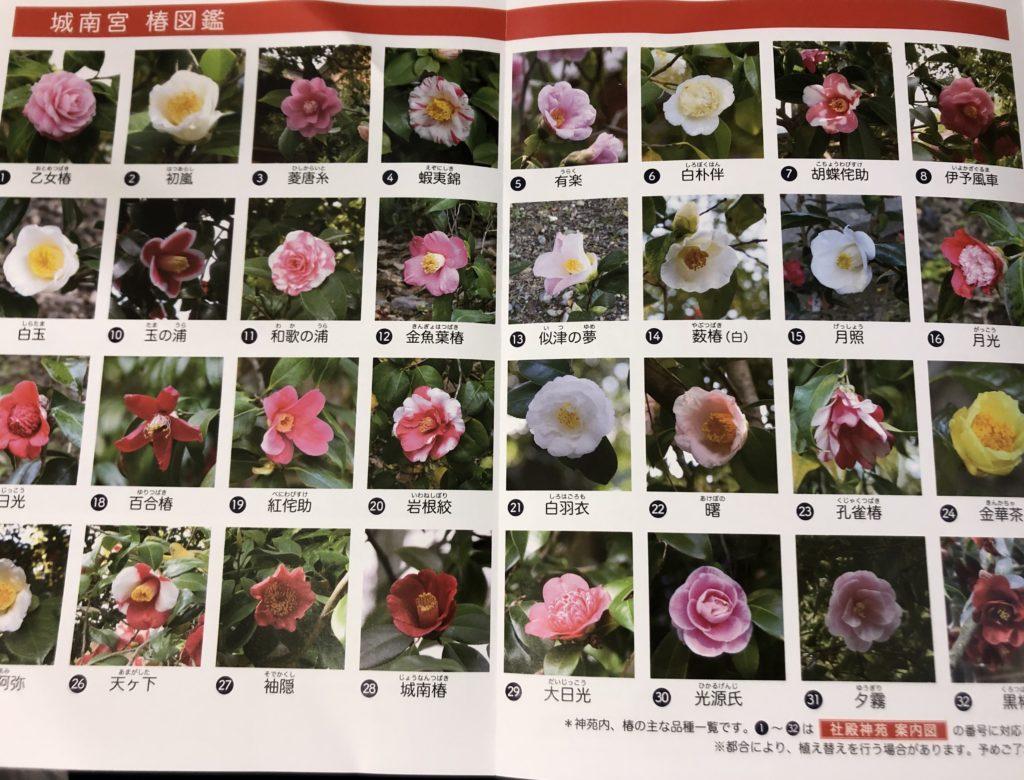 fd6ea9d4a6aed42f62f8c481042bee80-1024x780 京都 城南宮(※2/22現在見頃です!  2020年 春にオススメ。庭園に咲く150本の枝垂梅が絶景の写真スポット。 アクセス情報や交通手段・駐車場情報などまとめ)