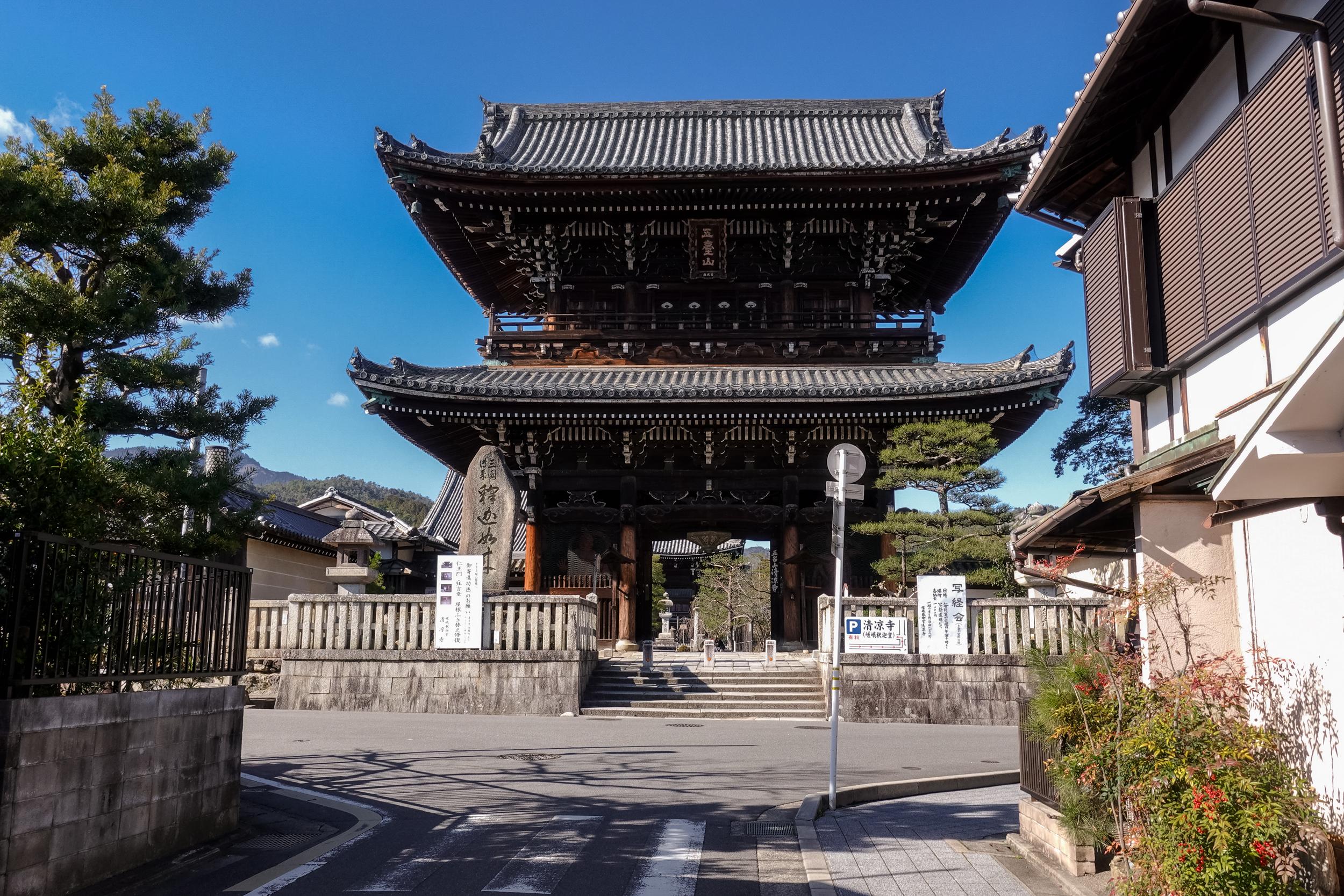 DSC03220 京都府 清凉寺(多宝塔と河津桜の美しい景色! 京都の春におすすめ桜写真スポット!撮影した写真の紹介、 アクセス方法や駐車場など)