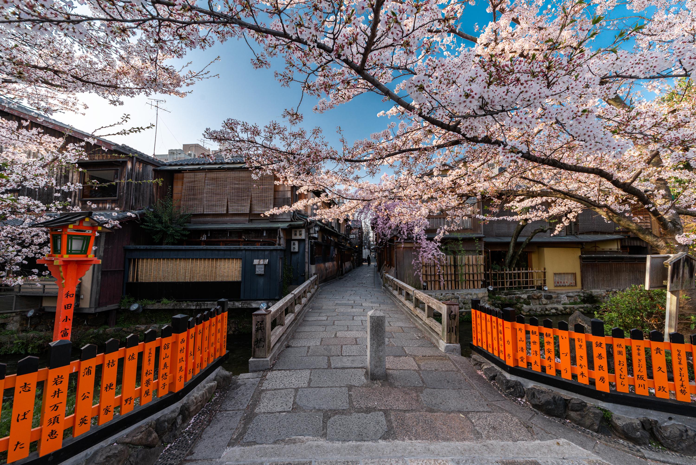 NIKON-CORPORATION_NIKON-D800E_1987066290-1987156296_16807 京都府 祇園白川・巽橋 (京都の風情を感じる巽橋と桜の美しい景色! 京都の春におすすめ桜写真スポット! 撮影した写真の紹介、アクセスや駐車場.ライトアップなど)