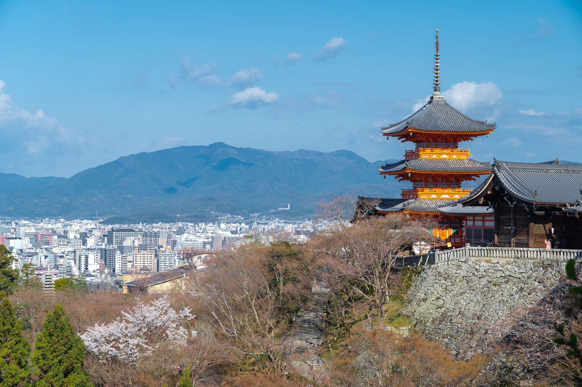 SONY_ILCE-7M3_1247384818-1247434103_164 京都府 清水寺(2020年 清水寺の桜景色と春におすすめの写真スポット. 見どころやライトアップ、アクセス、工事状況、桜の見頃情報まとめ)