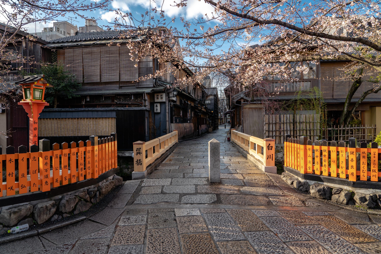 SONY_ILCE-7M3_3368680242-3368730079_2429 京都府 祇園白川・巽橋 (京都の風情を感じる巽橋と桜の美しい景色! 京都の春におすすめ桜写真スポット! 撮影した写真の紹介、アクセスや駐車場.ライトアップなど)