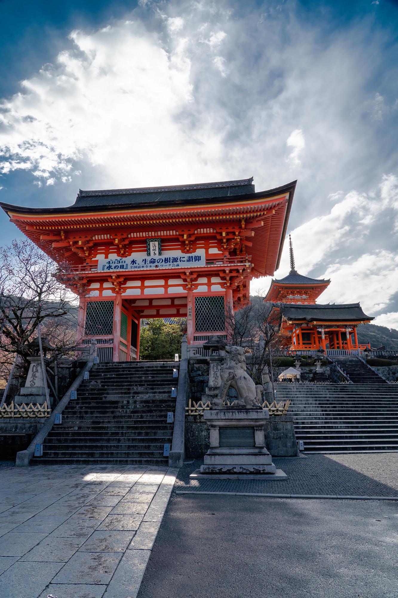 SONY_ILCE-7M3_3370705266-3370754311_2470 京都府 清水寺(2020年 清水寺の桜景色と春におすすめの写真スポット. 見どころやライトアップ、アクセス、工事状況、桜の見頃情報まとめ)