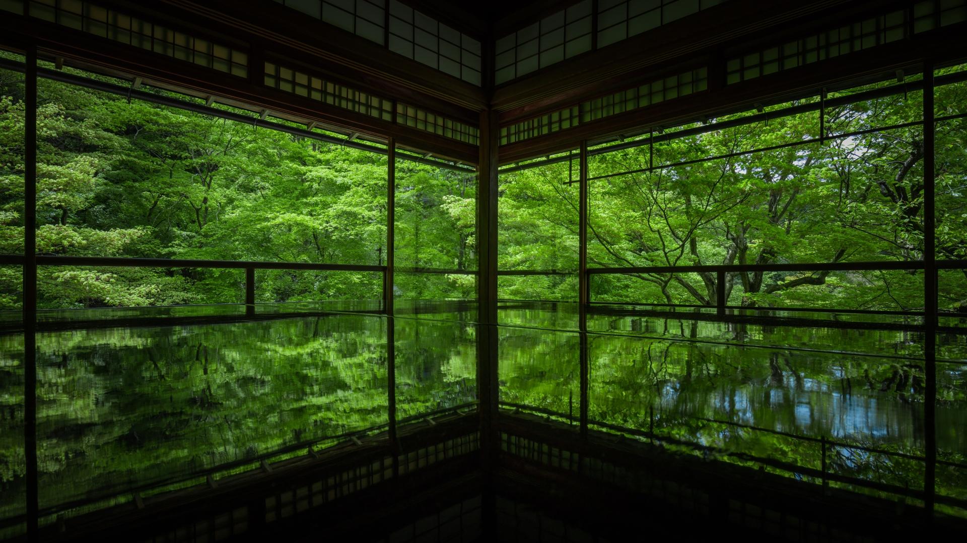 3926135_m 京都  瑠璃光院(京都の夏、新緑の時期におすすめのスポット!写真の紹介、アクセス情報など)