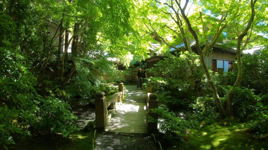418e98a2b8b3edd3c19f4775a082057c-1024x576 京都  瑠璃光院 ( 京都の夏、新緑のおすすめ写真スポット・アクセス情報や撮影ポイントなど!)