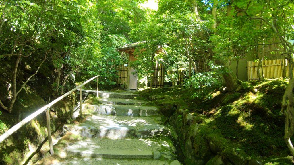 4f0874eb7edb78f3a79abbfe2ed518d1-1024x576 京都  瑠璃光院 ( 京都の夏、新緑のおすすめ写真スポット・アクセス情報や撮影ポイントなど!)