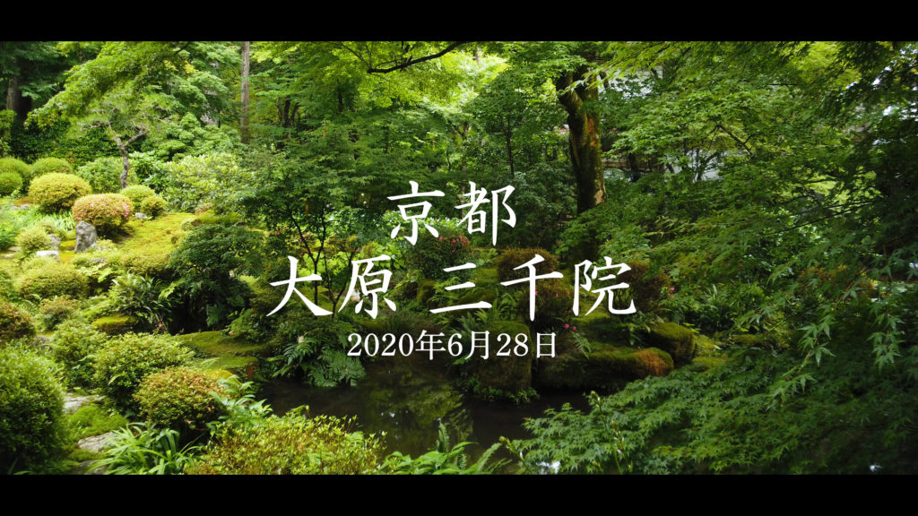 31bb8b34619141ea8f721215fb235ee8-1024x576 京都府 三千院 (青もみじと苔の新緑が美しい庭園.  初夏、梅雨の時期におすすめの写真スポット!撮影した写真の紹介、アクセス情報など)