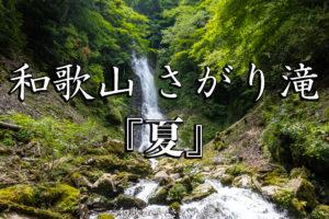 3f14234c4e591f741e3cf8e741c81330-2-300x200 京都ブログアイキャッチ用