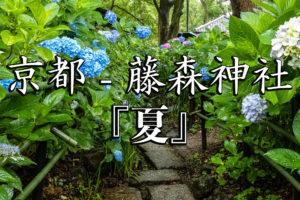 3f14234c4e591f741e3cf8e741c81330-300x200 京都ブログアイキャッチ用