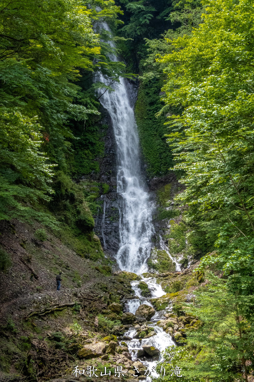 P1000765 和歌山県 さがり滝 (新緑の景色が美しい湯川渓谷の滝!夏、新緑の時期におすすめの写真スポット! 撮影した写真の紹介、アクセス方法など)