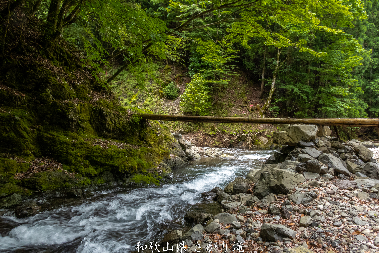 P1000805 和歌山県 さがり滝 (新緑の景色が美しい湯川渓谷の滝!夏、新緑の時期におすすめの写真スポット! 撮影した写真の紹介、アクセス方法など)